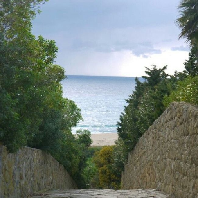 Summer Sunn Green Zahara Instalike Instamemories Instapaisaje Paisaje Like Like4like Like4follow Landscape #Nature #photography Landscape_Collection Landscape_photography Landscape Beautiful Perfect Beatifull