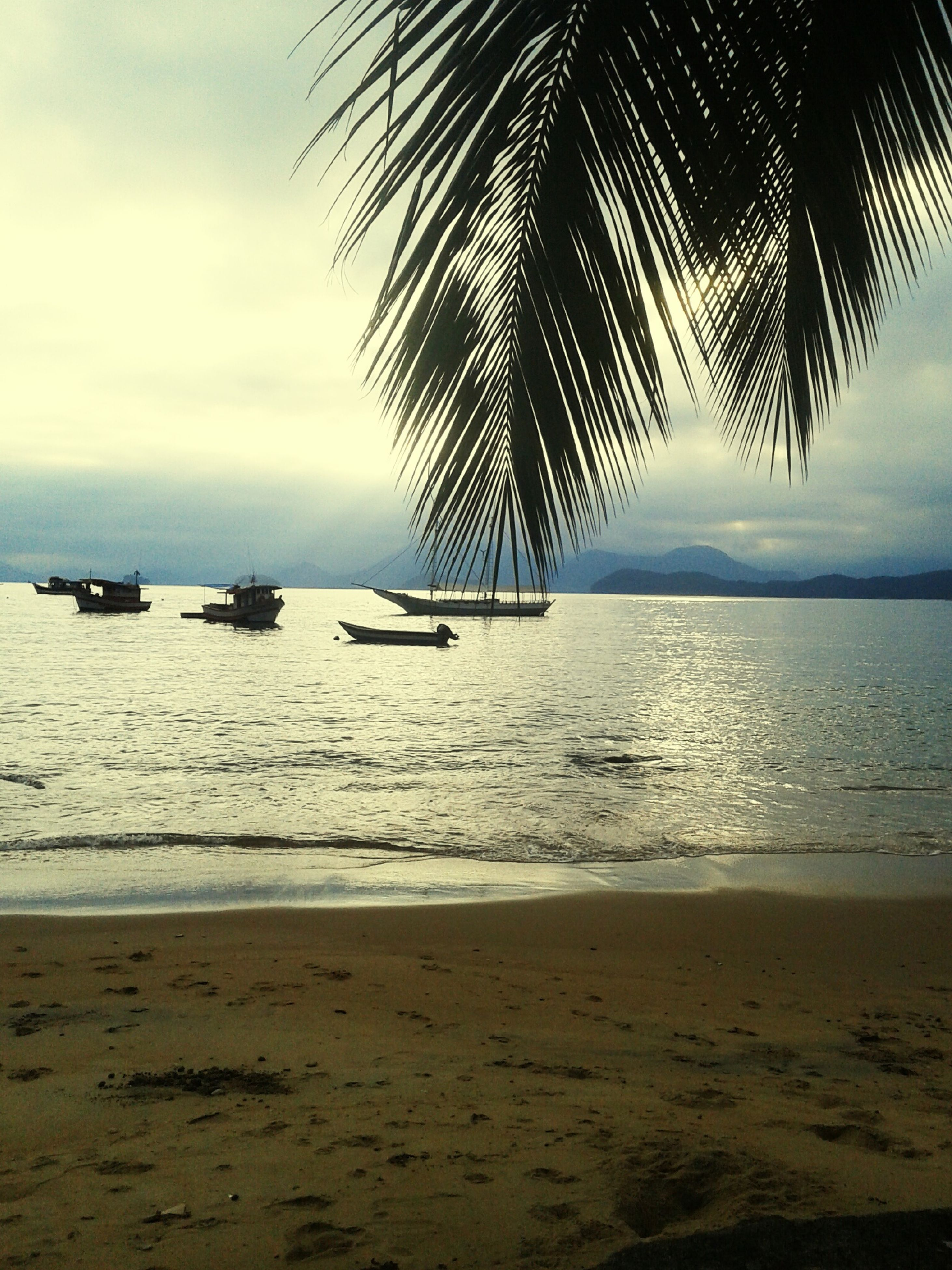 sea, beach, water, horizon over water, shore, nautical vessel, sky, sand, palm tree, transportation, tranquil scene, tranquility, boat, scenics, mode of transport, beauty in nature, nature, sunset, moored, idyllic