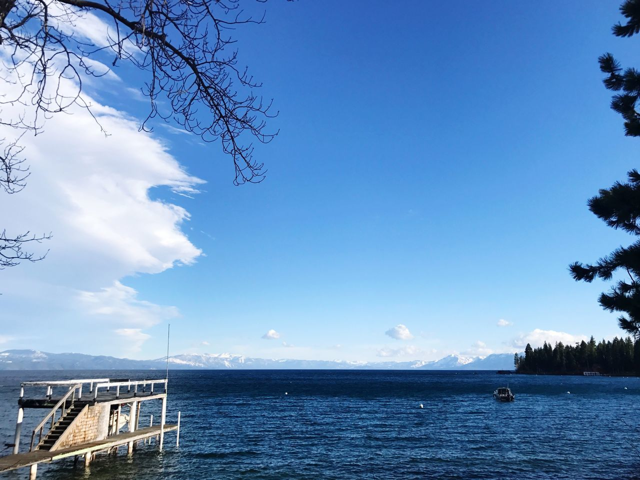 Lake Tahoe // Water Tree Sky Tranquility Sea Day Tranquil Scene Beauty In Nature Nature Scenics Outdoors No People Built Structure Blue Cloud - Sky Architecture