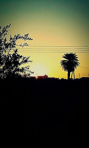 Monochrome Photography الطبيعة ليبيا لحظة_جميلة لقتطي لقطة_جميلـٍـٍة Good Morning Best Day Ever