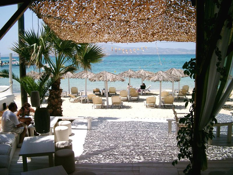 Palm Tree Sea Water Travel Destinations Traveling Greece Landscapes Greece Naxos Beach