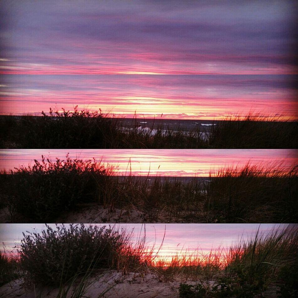 Kühlungsborn hat den schönsten Sonnenuntergang Sunshine Beach Sunset Ocean View Nature Layout
