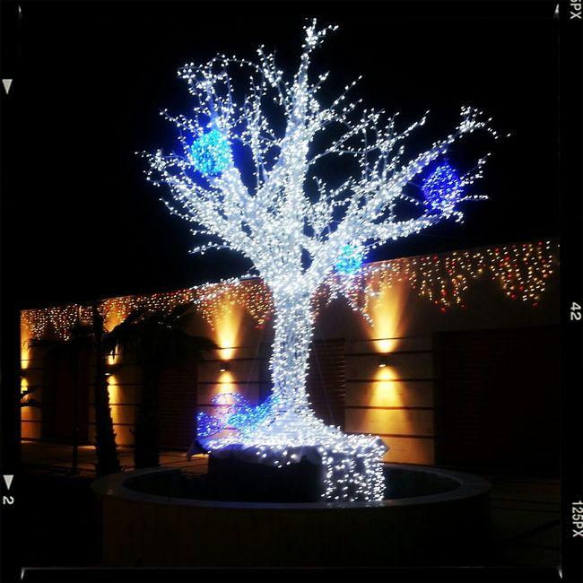 Christmas Christmas Lights Christmas Ornaments Natale 2012