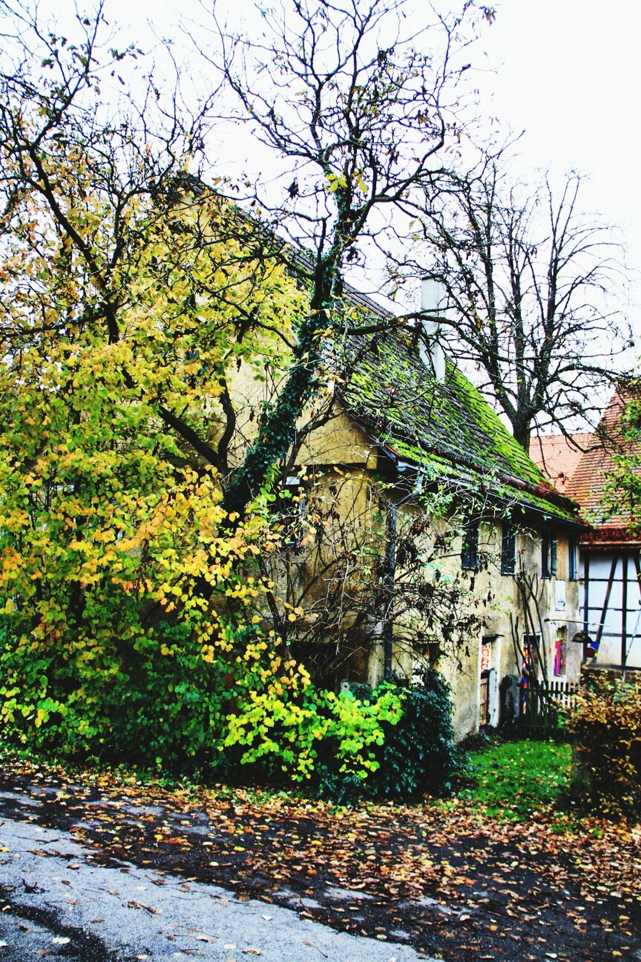 Tübingen Derendingen EyeEm Best Shots - Architecture Old House