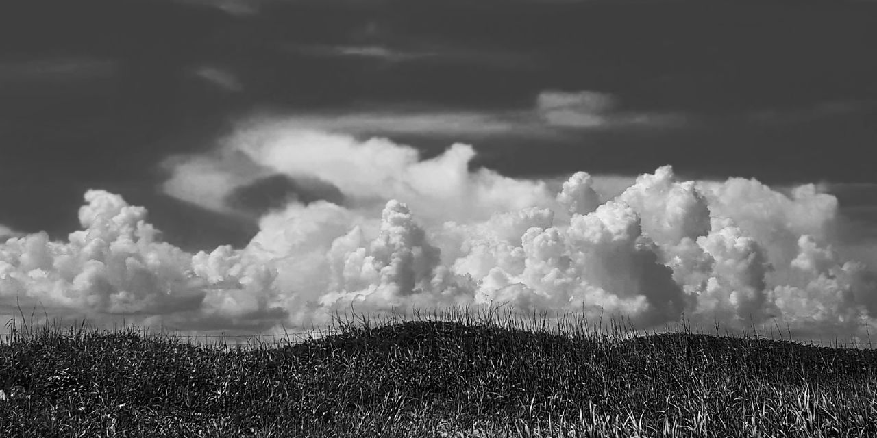 Scenic View Of Grassy Hill Against Sky