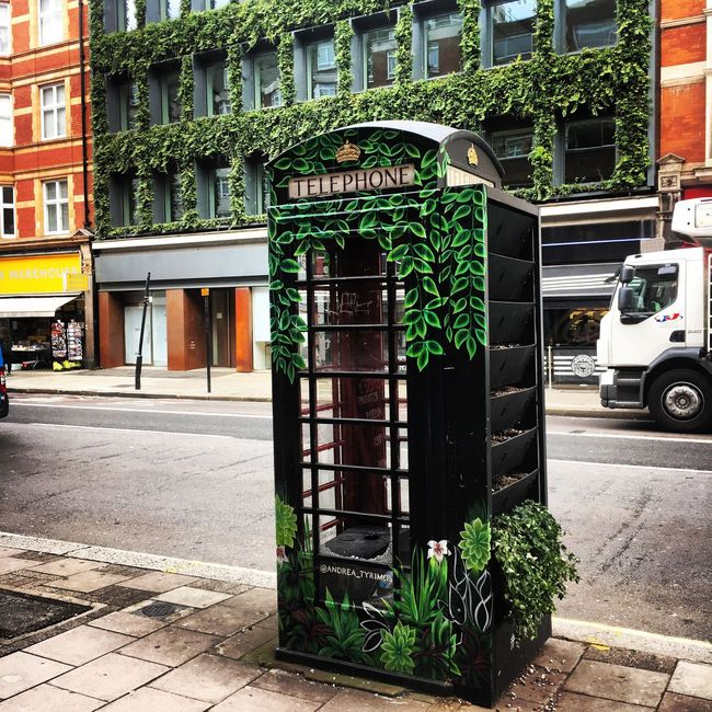 London Phone Red Phone Boxes Not Red Phone Box Phone Box Southampton Row Living Phone Box Plants Green
