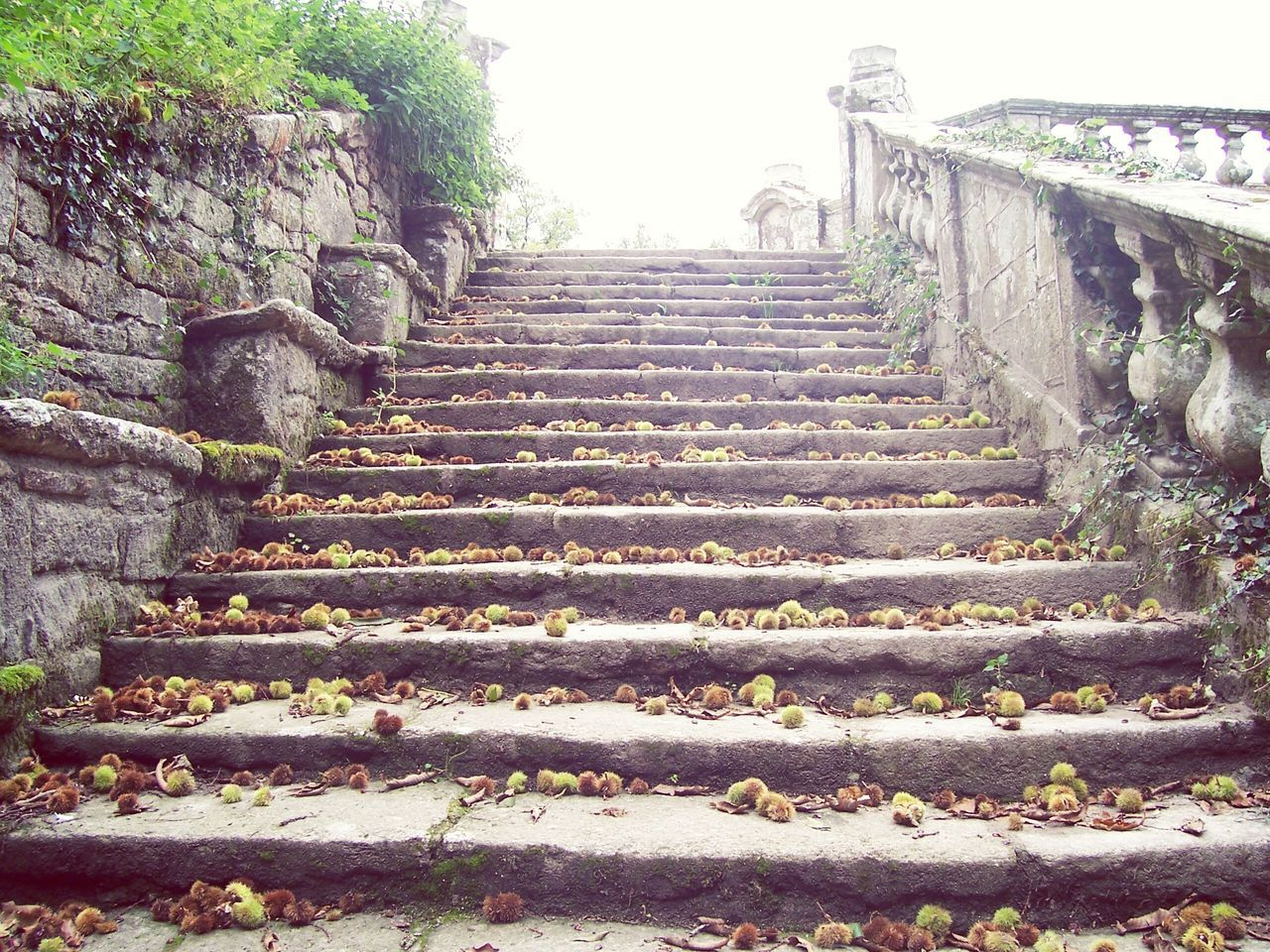 Stone Stairs Stone Stone Stairs France