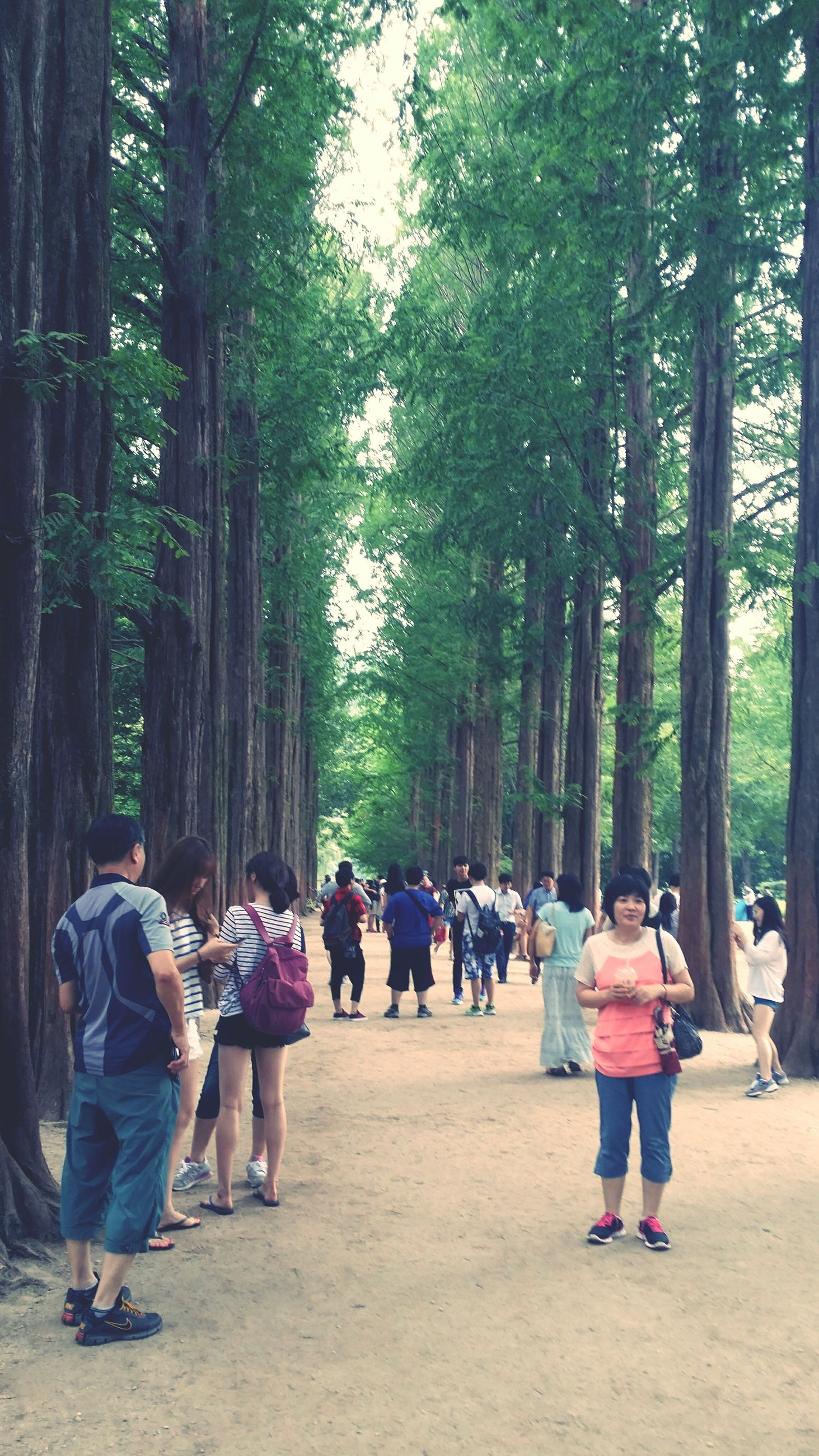 tree, lifestyles, leisure activity, person, men, rear view, togetherness, full length, casual clothing, walking, girls, childhood, boys, large group of people, park - man made space, bonding, tree trunk, love