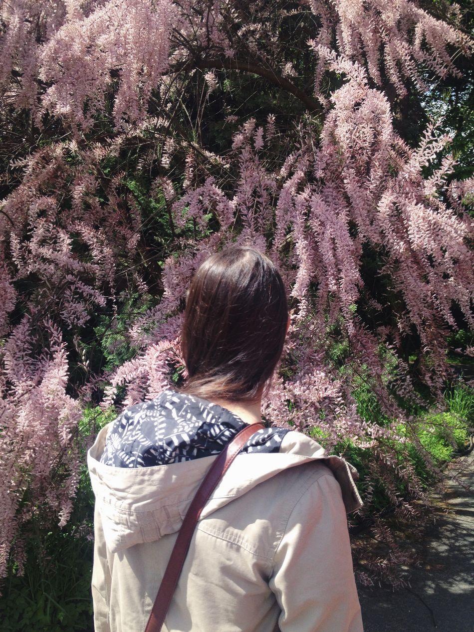 Summerinberlin Flowerpower