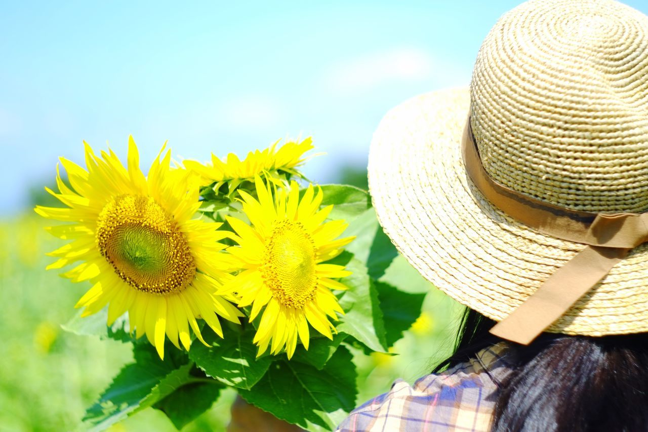 ひまわり ひまわり畑 向日葵 Sun Flower Summertime Summer Summer ☀ Summer Memories 🌄 Woman Portrait Woman Woman Who Inspire You 柳川