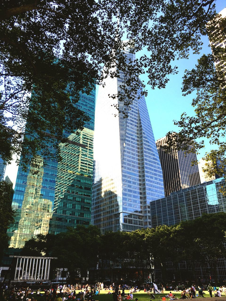architecture, built structure, tree, building exterior, skyscraper, tall - high, low angle view, modern, day, travel destinations, growth, city, outdoors, sky, large group of people, real people, people