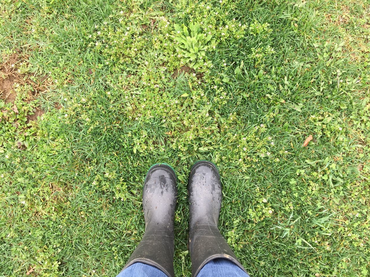 Grass Green Color Low Section Shoe Personal Perspective Standing Outdoors One Person Real People Day Human Leg Nature Human Body Part Rubber Boots Spring People