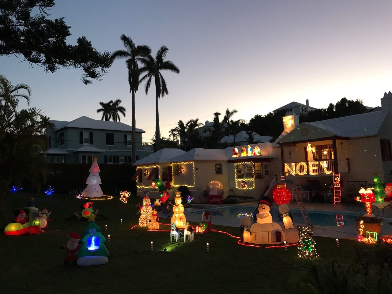 Christmas on an Island Bermuda Islandlife Tree Palm Tree Illuminated Celebration Clear Sky Building Exterior Outdoors Christmas Sky Architecture No People Night Christmas Decorations