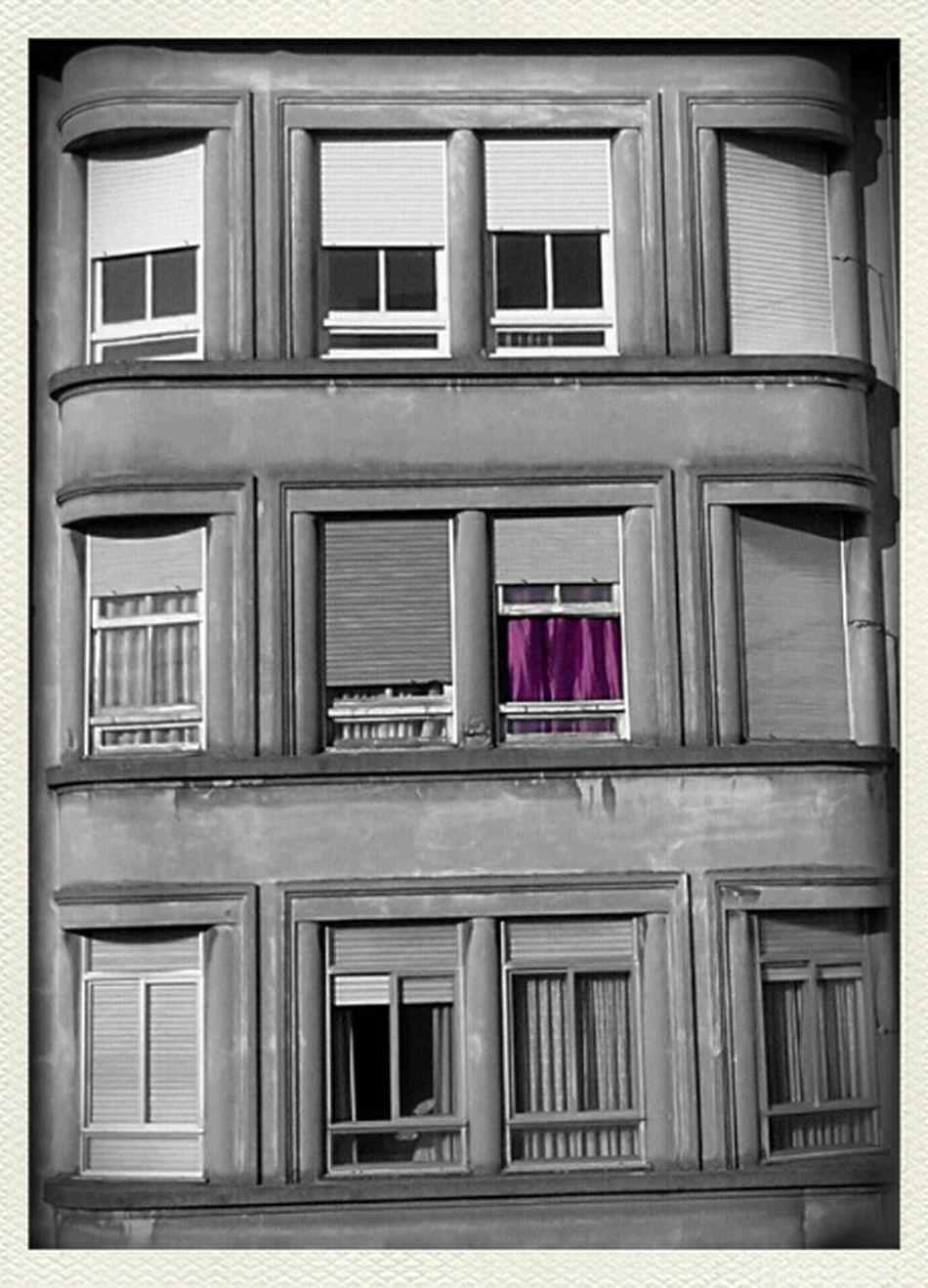 Shoot, Share, Learn - EyeEm Lugo Meetup The Color Purple