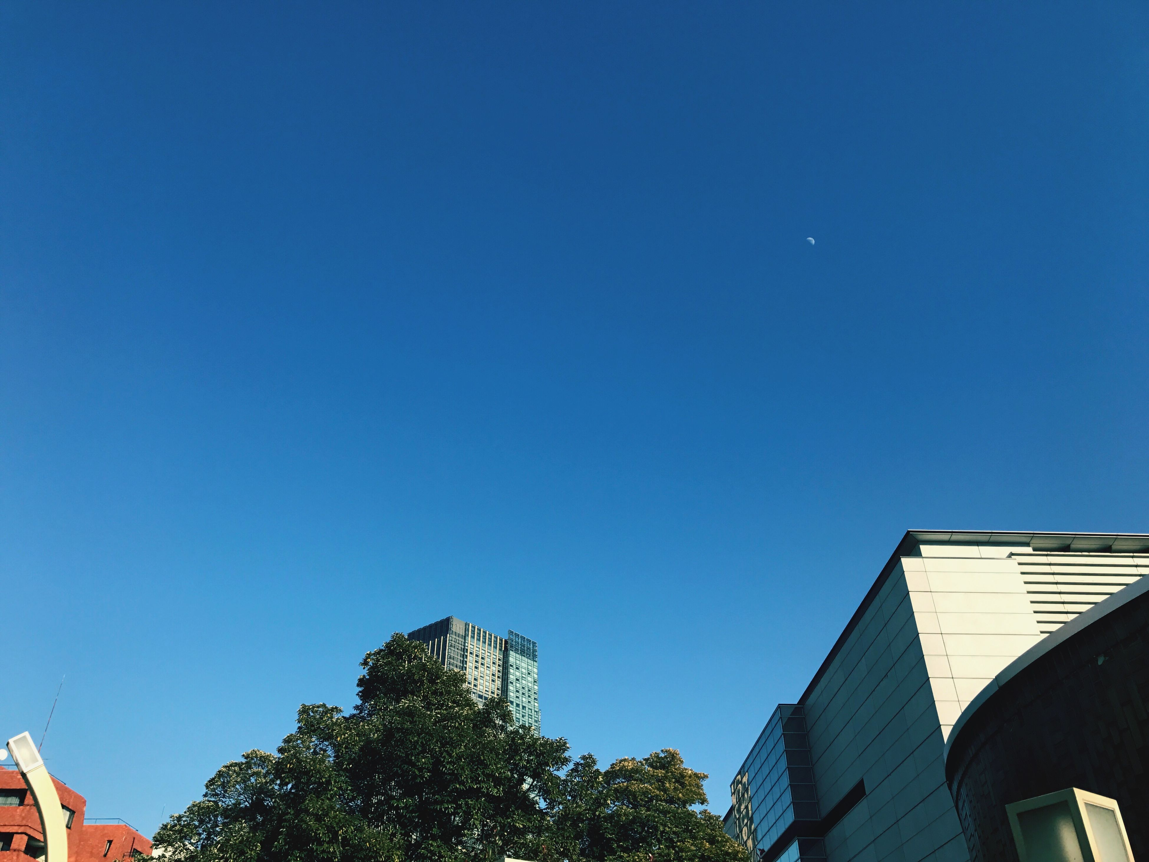low angle view, clear sky, blue, building exterior, built structure, architecture, no people, tree, outdoors, sky, day, nature