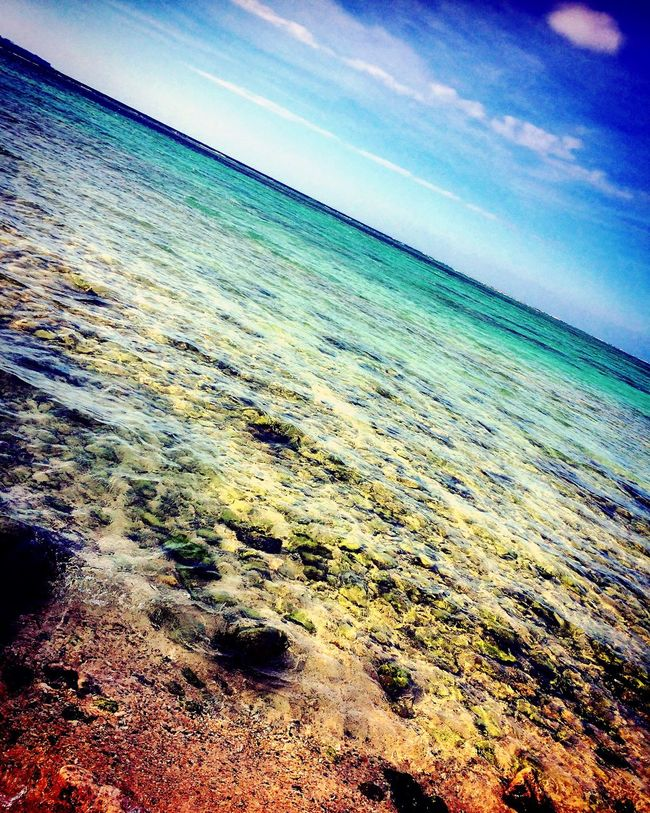 School Trip✈🌺 School Trip Japan Japanese  Okinawa Sea
