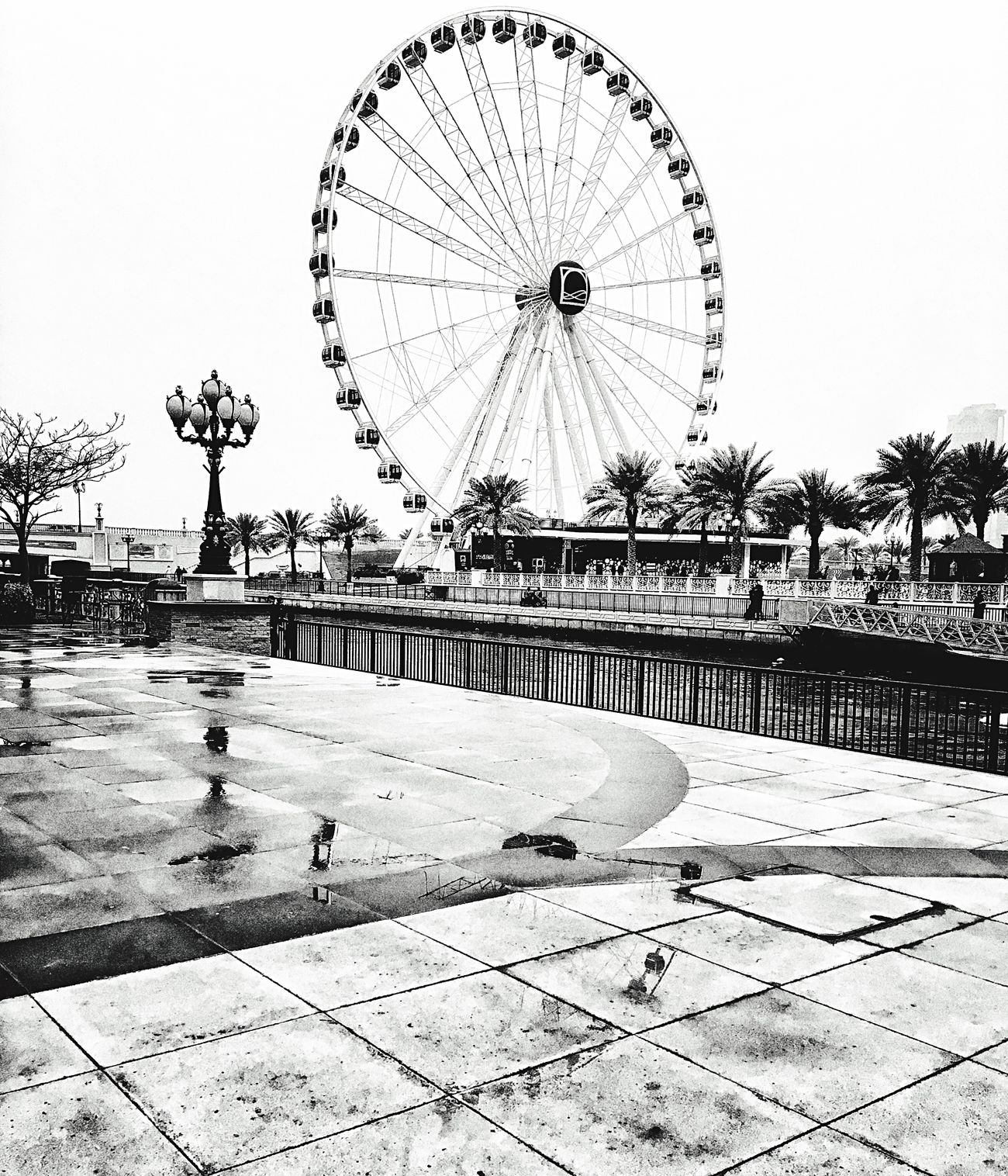 Big Wheel Outdoors Phoyography Photography High Angle View First Eyeem Photo