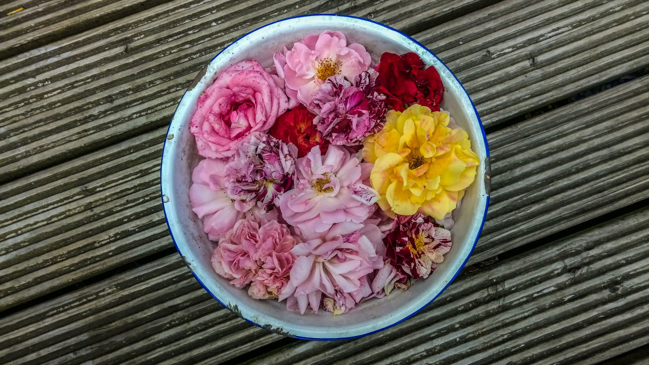 Bowl Close-up Day Directly Above Enamel Fade Faded Flower Flower Head Fragility Freshness Nature No People Petal Pink Color Purple Roses Wood - Material Wood Planks Yellow Flower