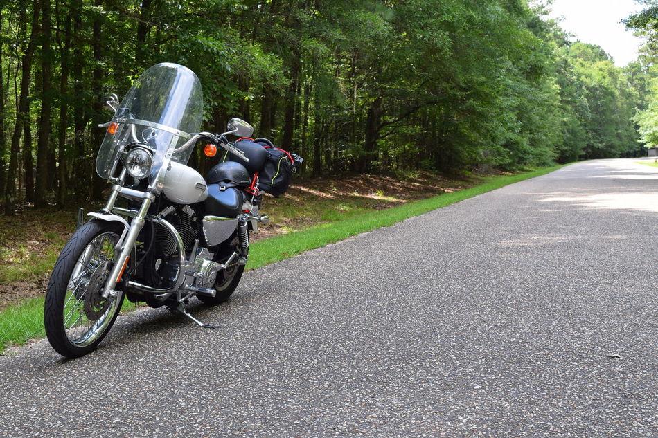Harleydavidson Ridding Around Road Trip Riding My Motorcycle