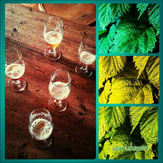 Dieu du houblon fait bien les choses.... cheers! Beer Tasting  Crops Houblon