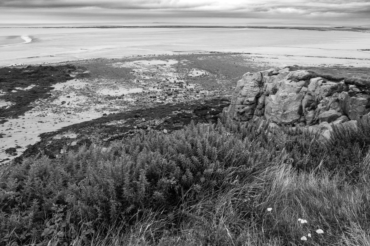 idmphotographer.com Beach Beauty In Nature Blackandwhite Photography Close-up Coastline Cumbria Day Dramatic Landscape Dramatic Sky Grass Heysham Coast Horizon Over Water Landscape Morning Light Nature No People Outdoors Sand Scenics Sea Sky Sunrise Tranquil Scene Tranquility Water