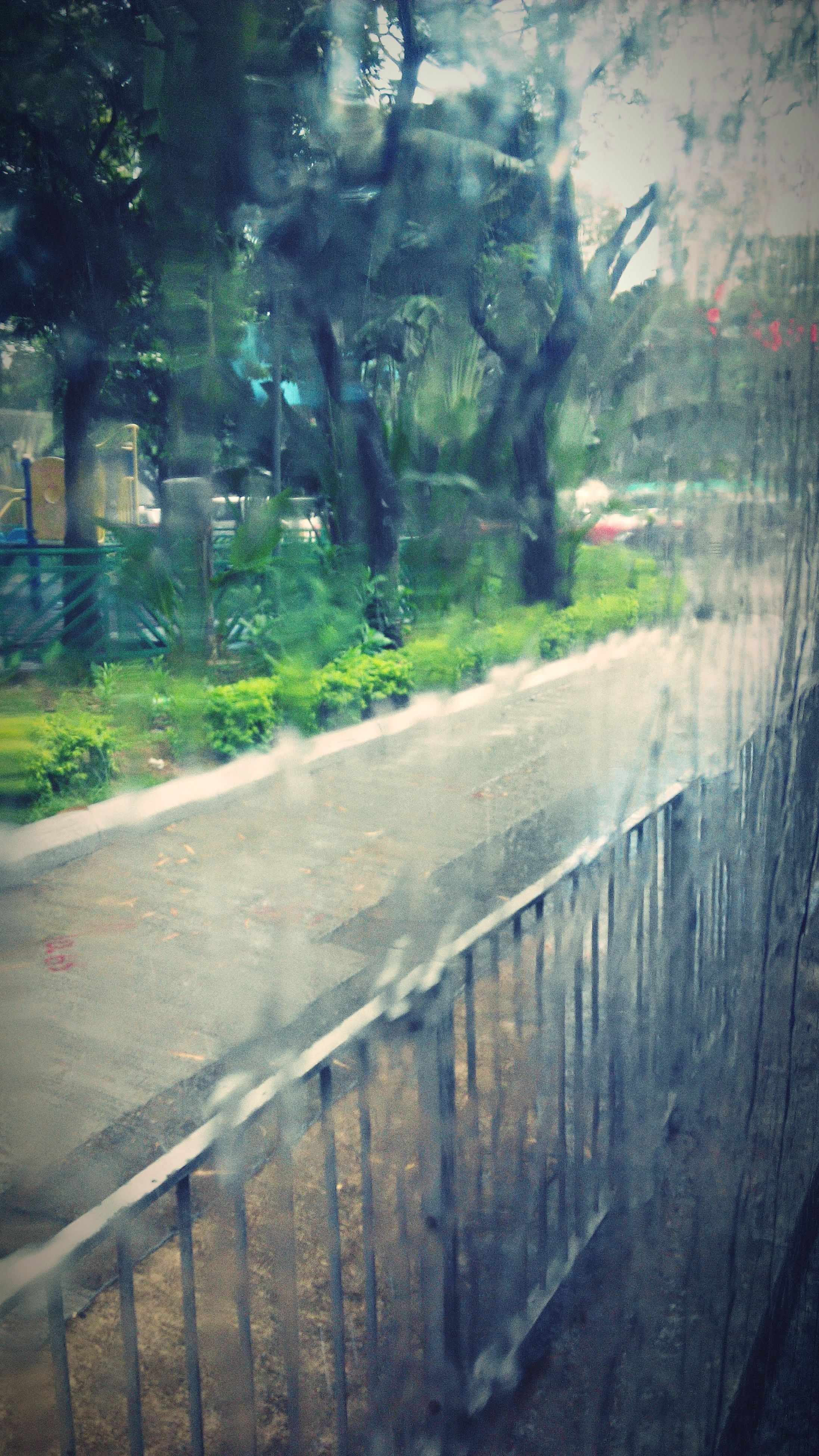 transportation, road, tree, the way forward, street, transparent, glass - material, wet, road marking, rain, water, car, no people, day, outdoors, window, vehicle interior, mode of transport, nature, reflection