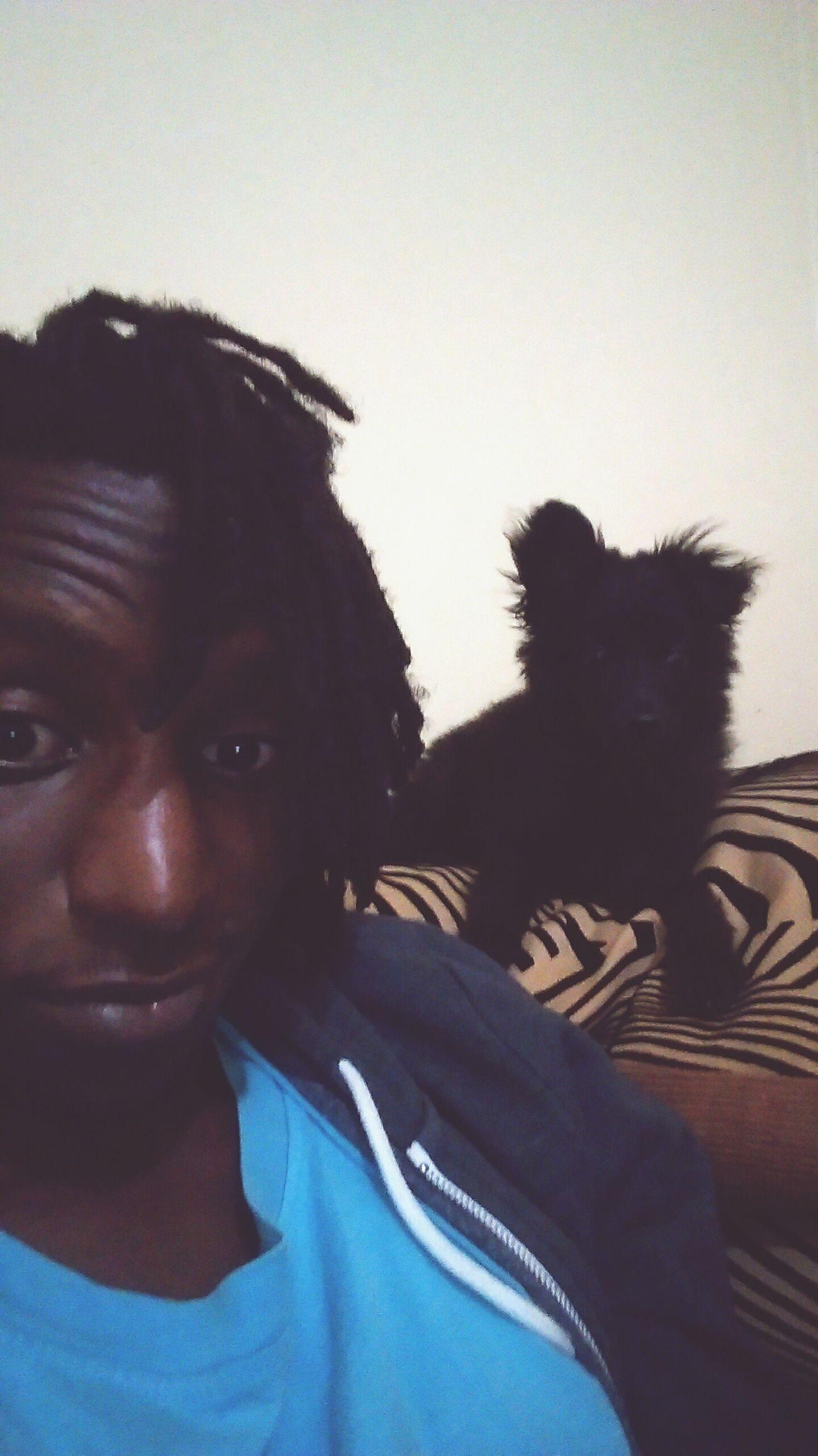 Puppy Love ❤ RASTA Warm Day Indoors  Nairobi
