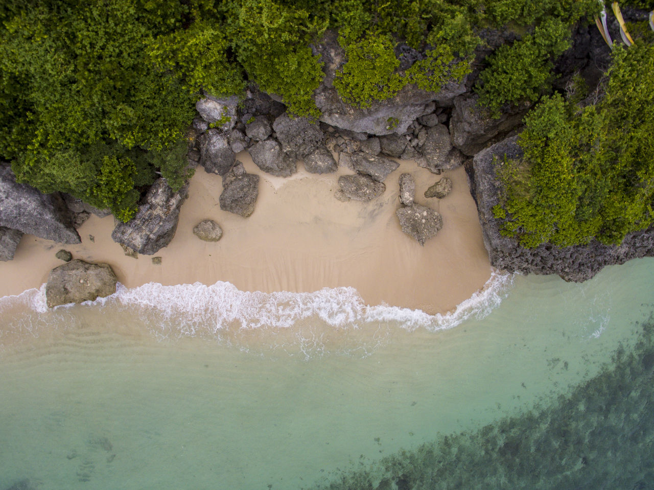 aerial view of a beach in bali Aerial View Beach Beauty In Nature Close-up Day Drone Shot, Dronephotography From Above  INDONESIA Nature No People Ocean Outdoors Sandbeach Sea Tree Water Waterfront