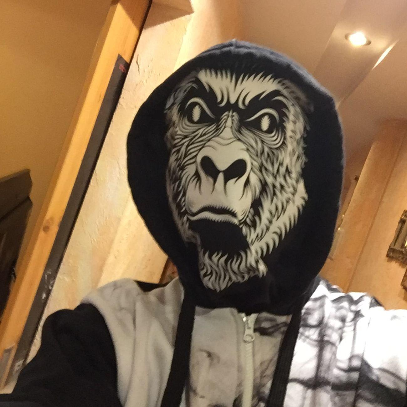 Małpa Małpa Mówi 71 Wroclaw, Poland