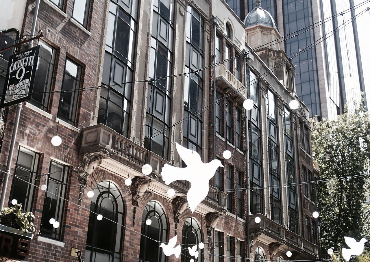 Beautiful stock photos of friedenstaube, architecture, building exterior, built structure, city