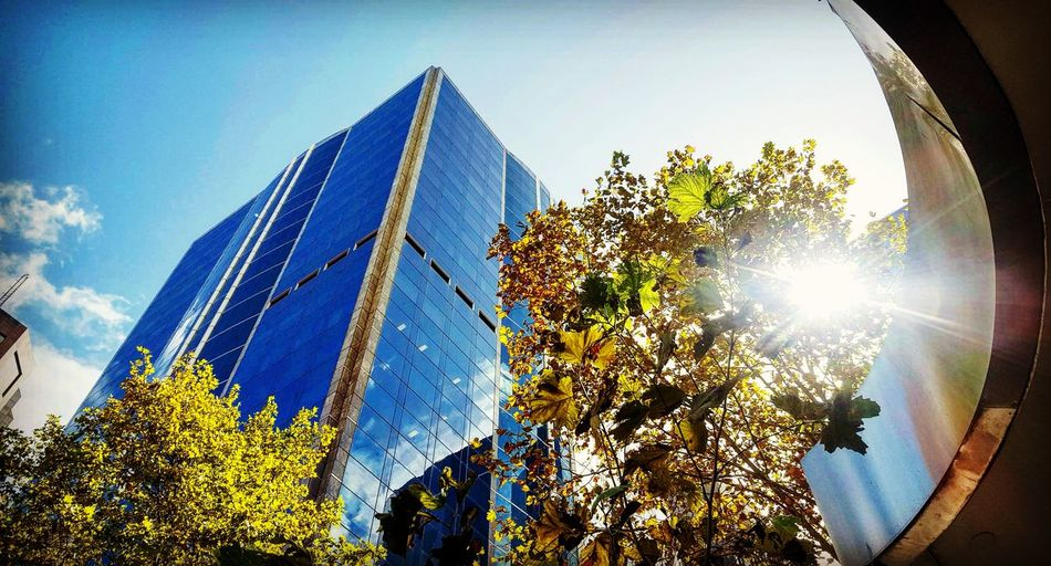 Architecture Sky Built Structure Skyscraper Sunbeam Illuminated No People Sunlight Outdoors Modern NatureAndStructure Day Blue Tree Low Angle View Sunset Nature First Eyeem Photo