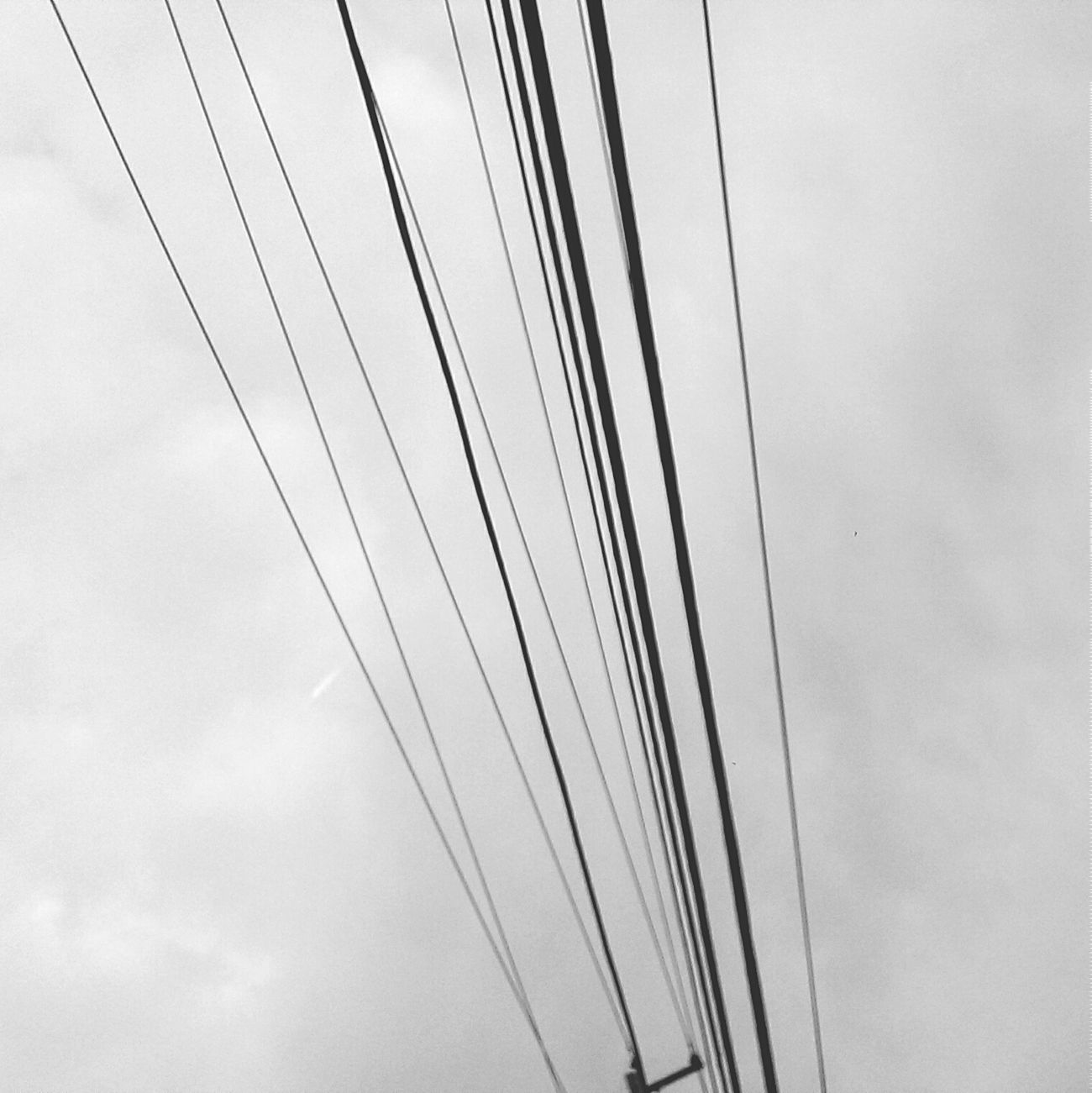 Wires In The Sky Black & White Notsofun