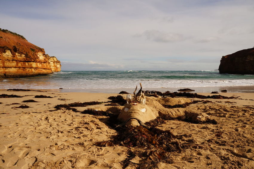 Australia EyeEm Nature Lover Beach Beauty In Nature Cloud - Sky Crocodile Day Horizon Over Water Nature No People Outdoors Rock - Object Rock Formation Sand Scenics Sea Shore Sky Tranquility Water
