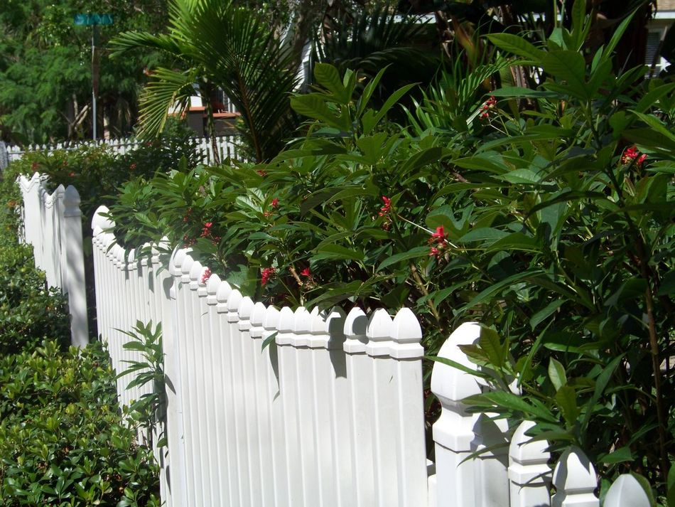 Saint Petersburg Florida Roser Park In St. Petersburg, Florida,USA Walking Around Enjoying The Sun White Picket Fence Escaping DT Saint Petersburg, Florida, USA I Live Where 70,000,000 People Visit Per Year Hello World Jewgay Living In America Noedit No Hetero I Love You