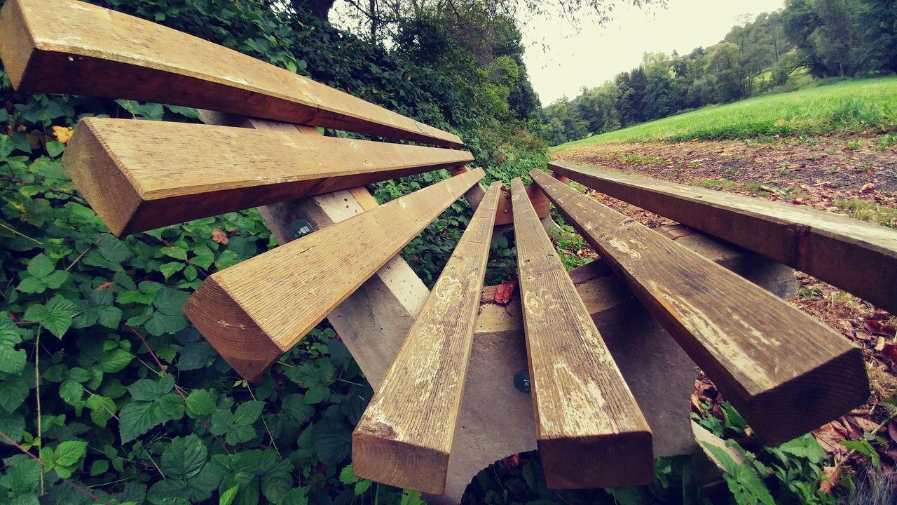 Bench ławka Green Zielen Grass Trawa Earth Ziemia Drzewo Tree Road Droga Forest Las LG  Smartphonephotography Lg G5 Smartphone Photography Lgg5photography