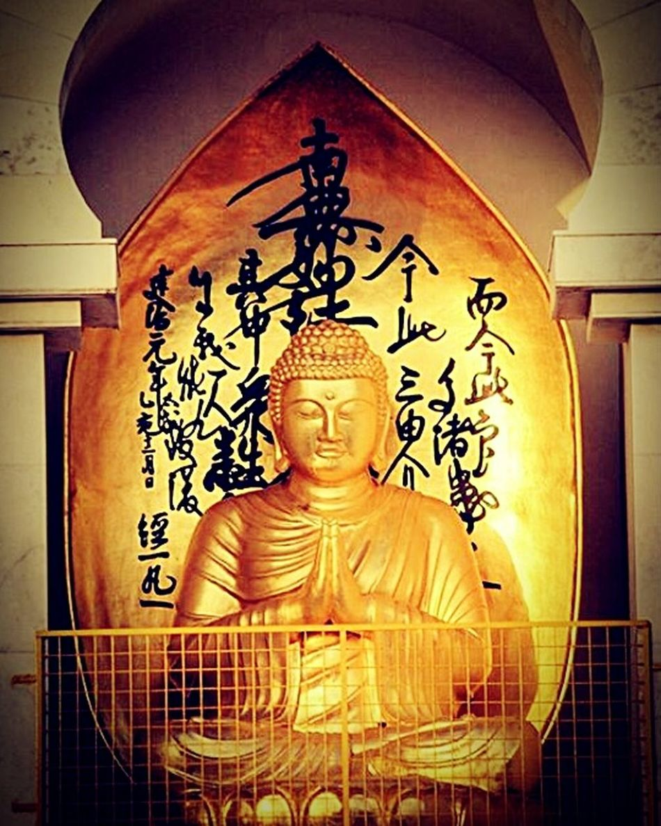 Hello World Buddha Statue Buddhism Loveformankind Gautambuddha Peace ✌ Peaceofmind Serenity Wardha Monastery