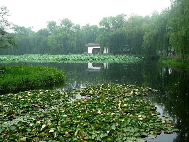 Lake View In China In Beijing China Traveling ASIA Pekin