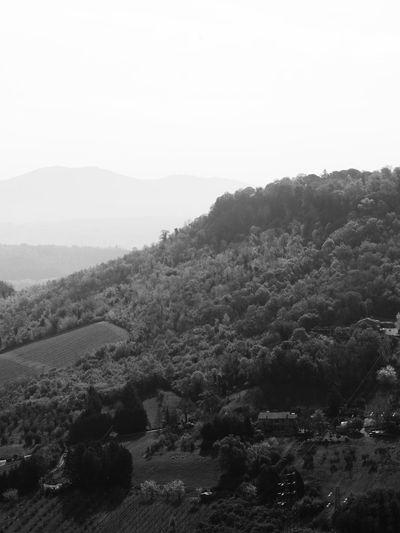 Orvieto, Italy Landscape Italy Layers Black & White Skyline Wood