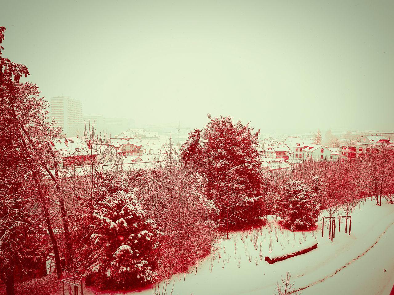 Geneva Geneve Snow ❄ Snowing Winter Cold Temperature Landscape EyeEm Nature Lover EyeEm Best Shots EyeEm EyeEm Best Shots - Nature EyeEm Gallery EyeEmNewHere