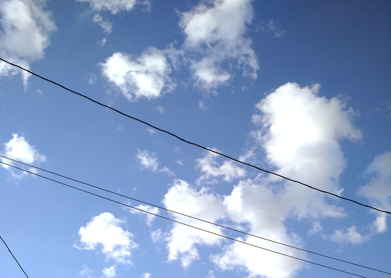 cable, low angle view, power line, connection, power supply, cloud - sky, sky, no people, electricity, day, outdoors, telephone line, nature, technology, bird, animal themes
