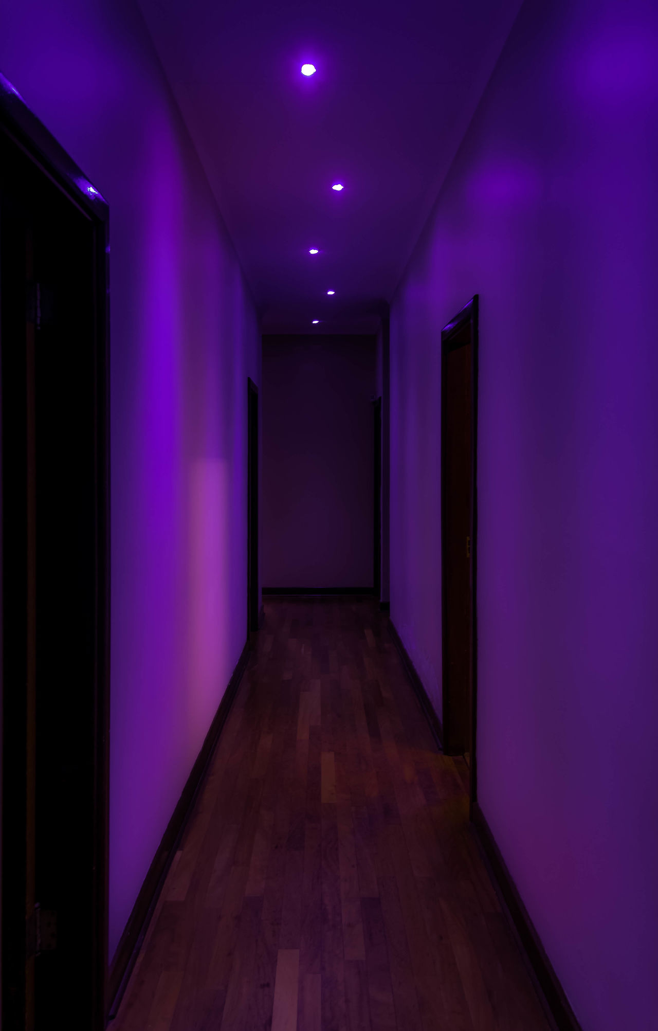 Passage Ambiance Ambient Ambient Light Architecture Built Structure Corridor Corridor View Door Empty Empty Building Empty Corridor Empty Passage Hotel Illuminated Indoors  Lights Lights And Shadows Lights In The Dark Luxury No People Passage Passageway Pink Purple Welcome To Black EyeEm Diversity