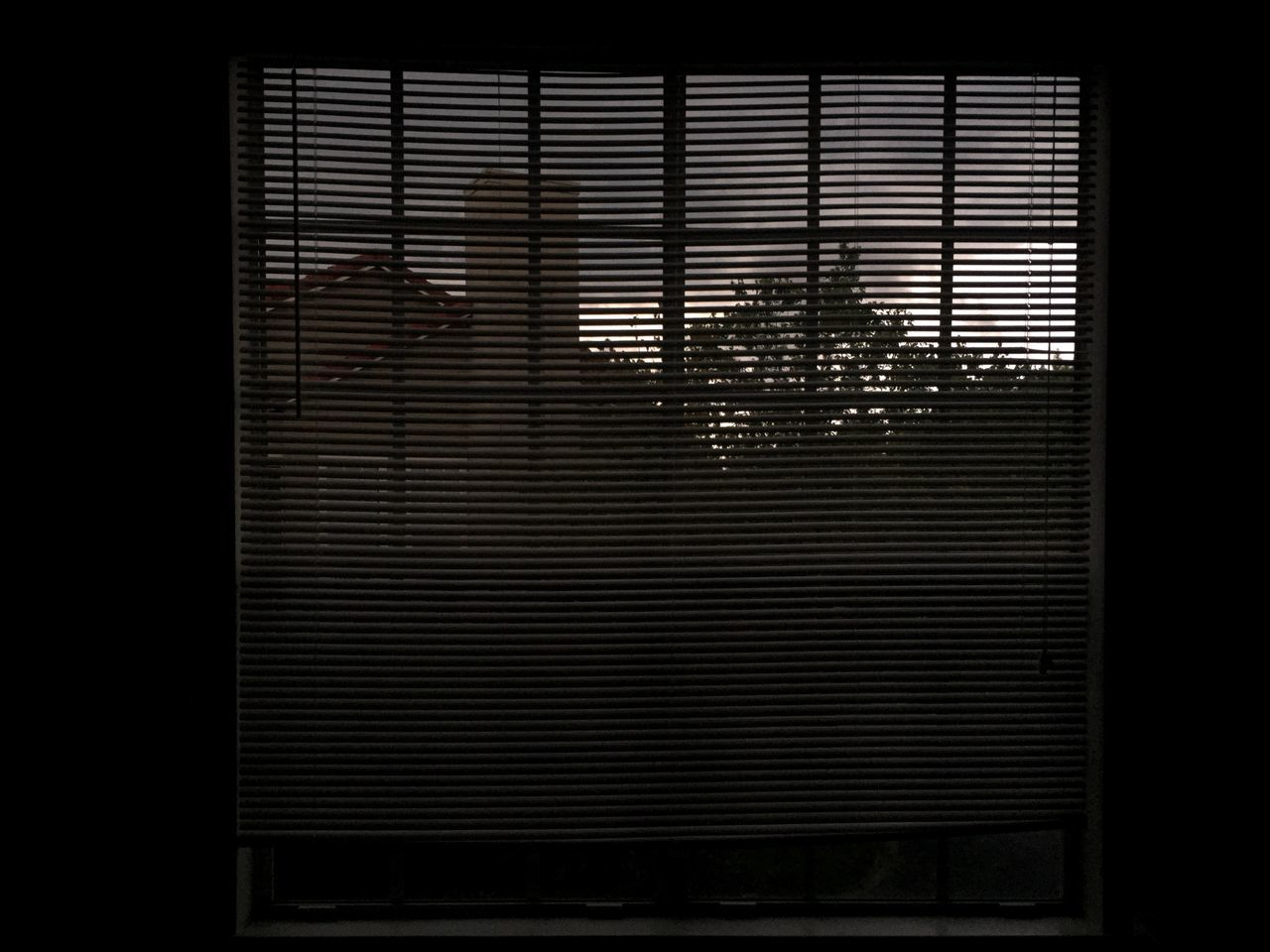 blinds, shutter, window, indoors, no people, architecture, corrugated iron, close-up, day