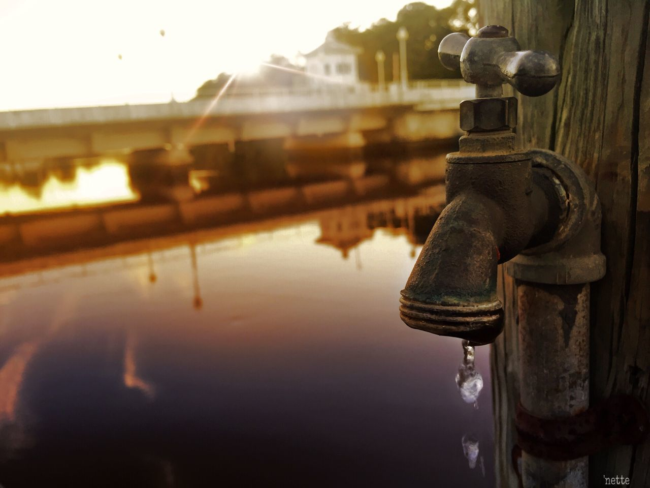 water, drop, outdoors, no people, close-up, focus on foreground, built structure, building exterior, architecture, day, sky, dripping, nature