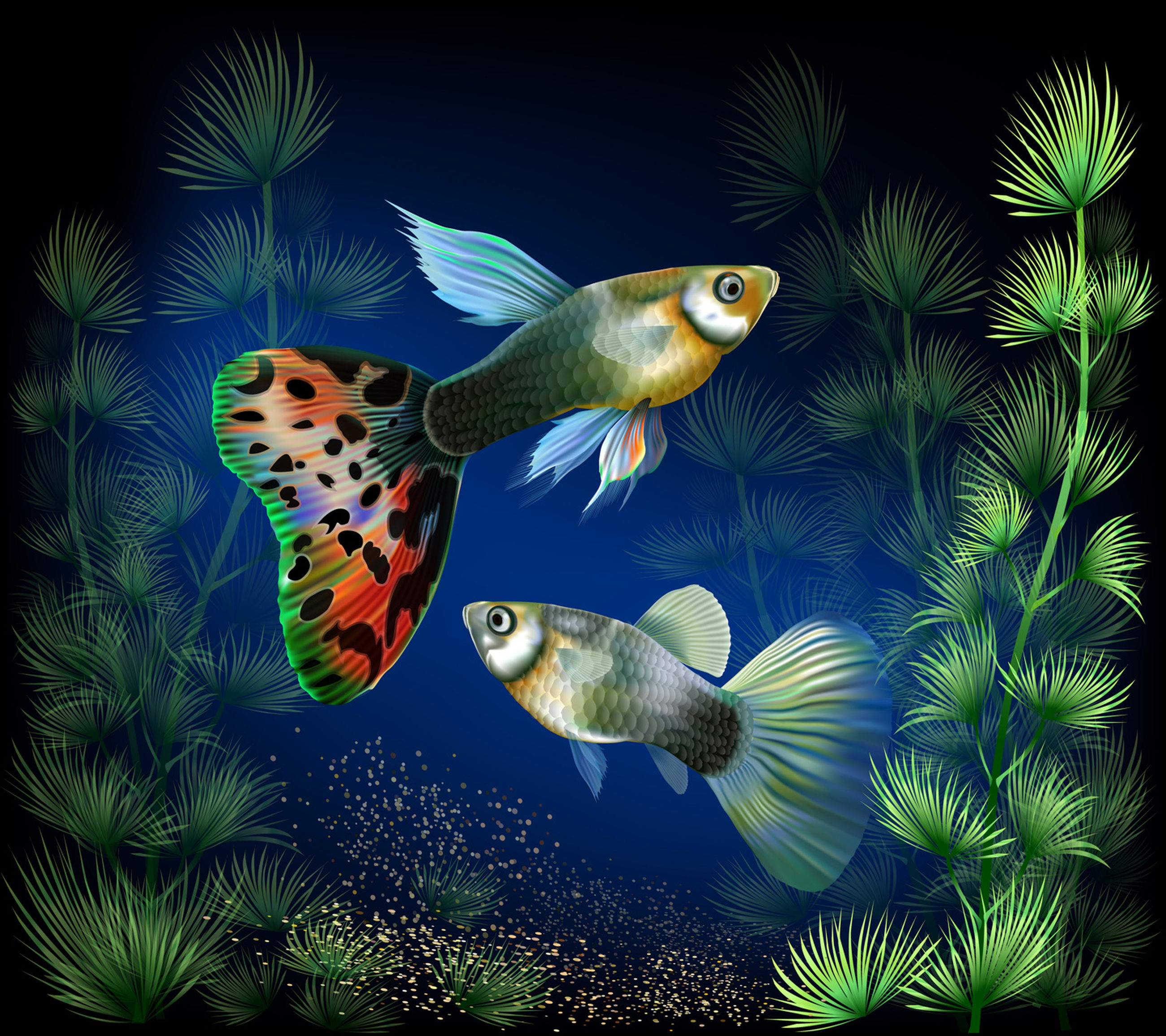 animal themes, multi colored, swimming, water, fish, close-up, underwater, animals in the wild, wildlife, zoology, nature, undersea, sea, plant, animal markings, vibrant color, orange color, beauty in nature, exoticism, symbiotic relationship, tranquility, colorful, no people, tranquil scene