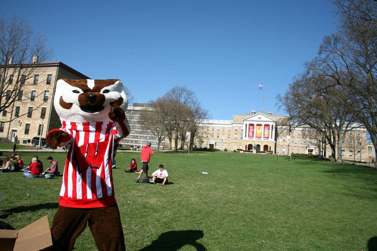 Architecture Badgers  Bascom Hill Blue Bucky Building Exterior Built Structure Clear Sky Day Field Fresh On Eyeem  Grass Grassland Lawn Leisure Activity Mascot Outdoor Play Equipment Outdoors Park People And Places Performance Playing Sport The Color Of School Tree
