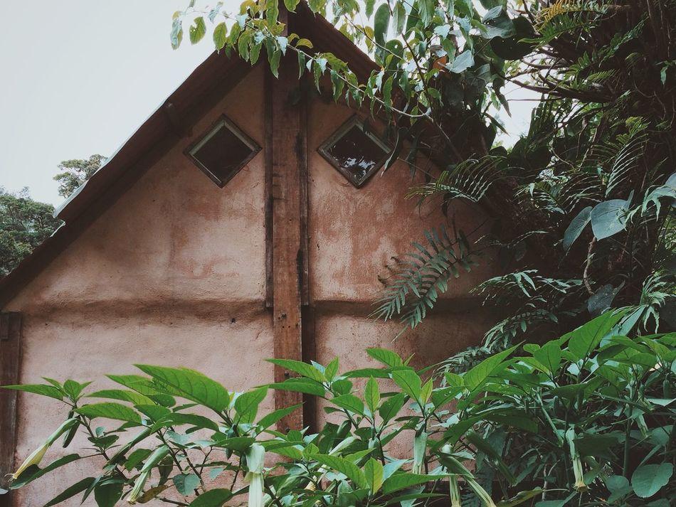 Beautiful stock photos of costa rica, Architecture, Building Exterior, Built Structure, Costa Rica