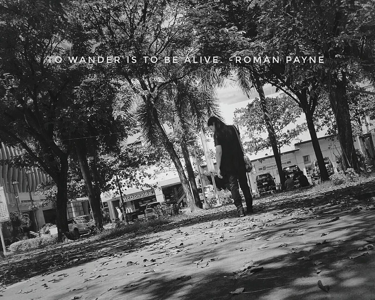 To wander is to be alive. -Roman Payne XishiWanders SereneScene Outdoors Wander Explore Learn Stroll WanderingInSolitude Peace Low Angle View Peaceofmind Peaceofheart Goodlife Solitude SilenceAndSolitude