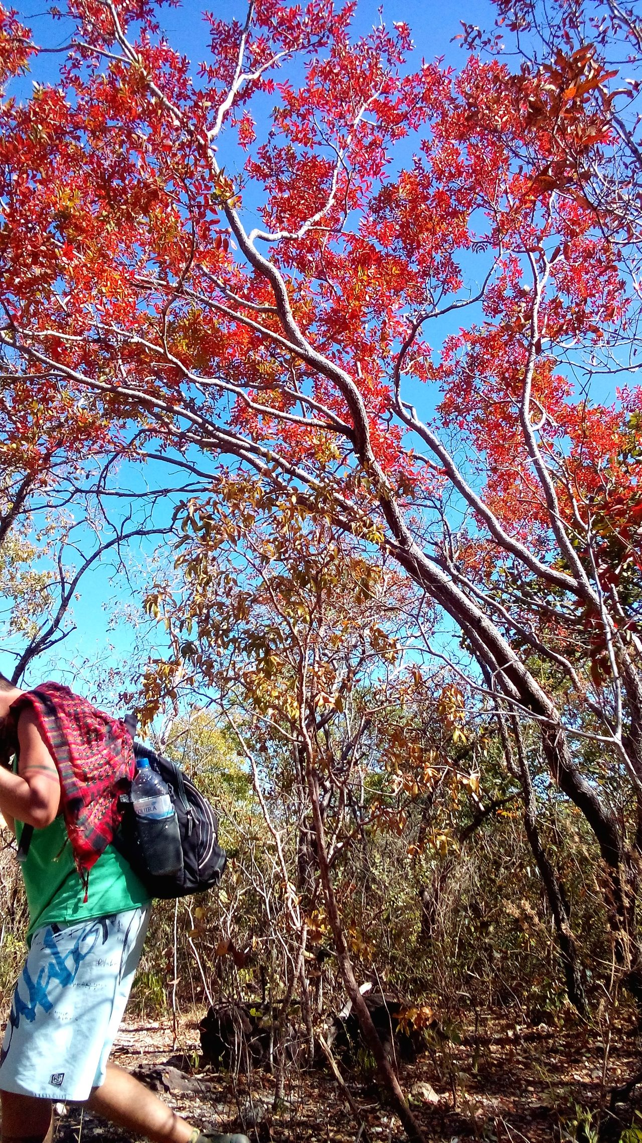 Chapadadosveadeiros EyeEm Brasil Nature Photography Nature_collection Eyemphotography Travel Photography Chapada Dos Veadeiros Enjoying Life The Weekend On EyeEm Colorful Goias São Jorge Brasil ♥ Brazil
