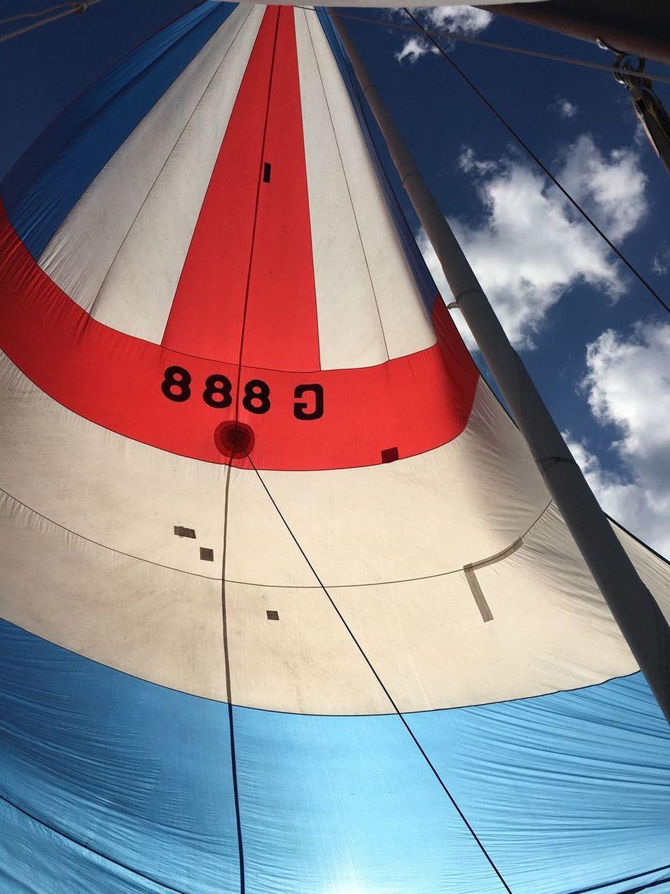 Sailing Spinnaker Dyas 888
