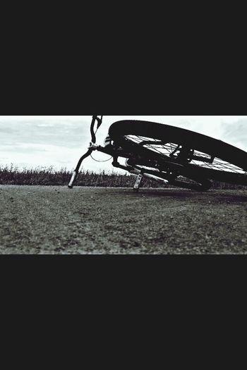 Bike Dirt Specialized Slopestyle